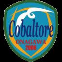 cobaltore_logo