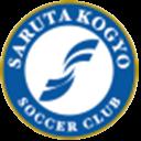 satuta_logo